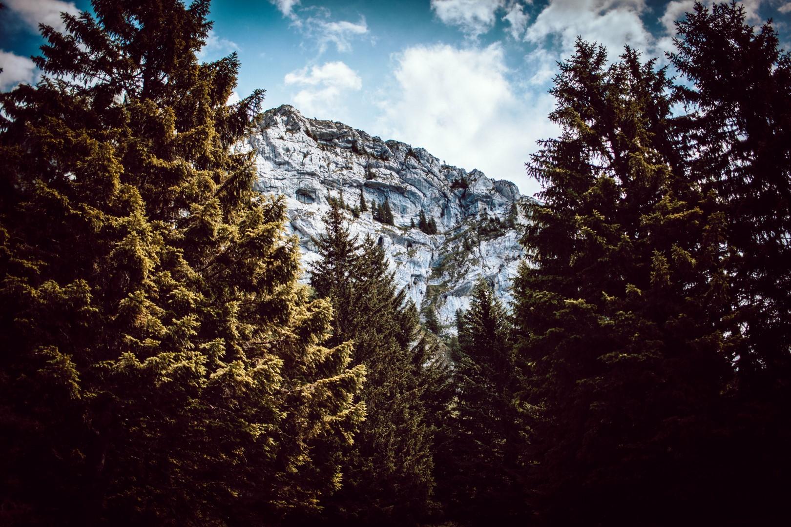 Backstage - Roche Montagne
